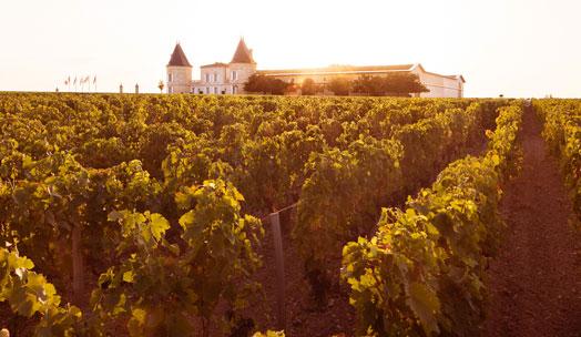 Château Lilian Ladouys wine producer