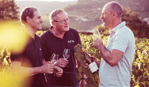 Domaine Auvigue wine producer