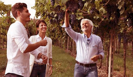 Antiche Terre Venete wine producer