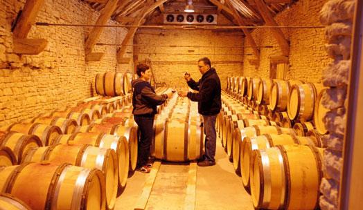 Lucien le Moine wine producer